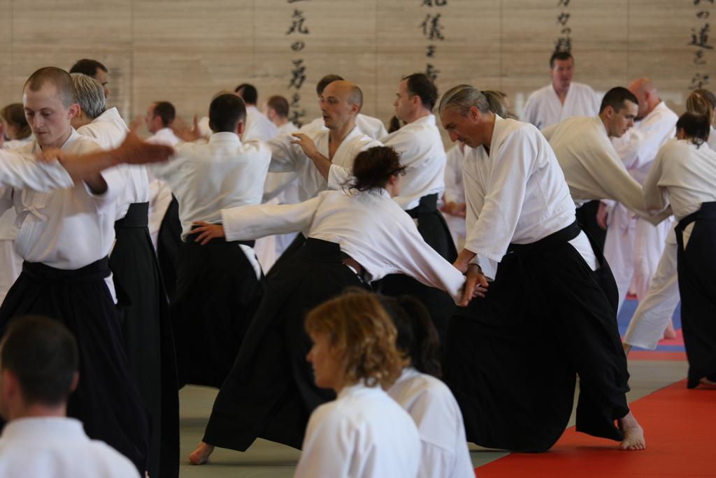Zajęcia Aikido dla dorosłych
