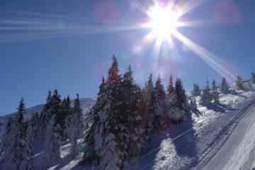 Plan zajęć w czasie ferii zimowych
